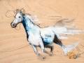 horse_wod_sm